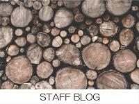 岐阜のイベント情報、構造見学会、完成見学会、上棟見学会のお知らせ、スタッフブログ