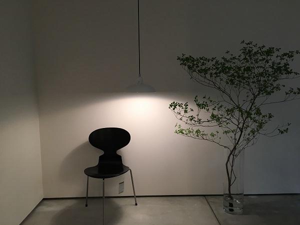 IMG_9446